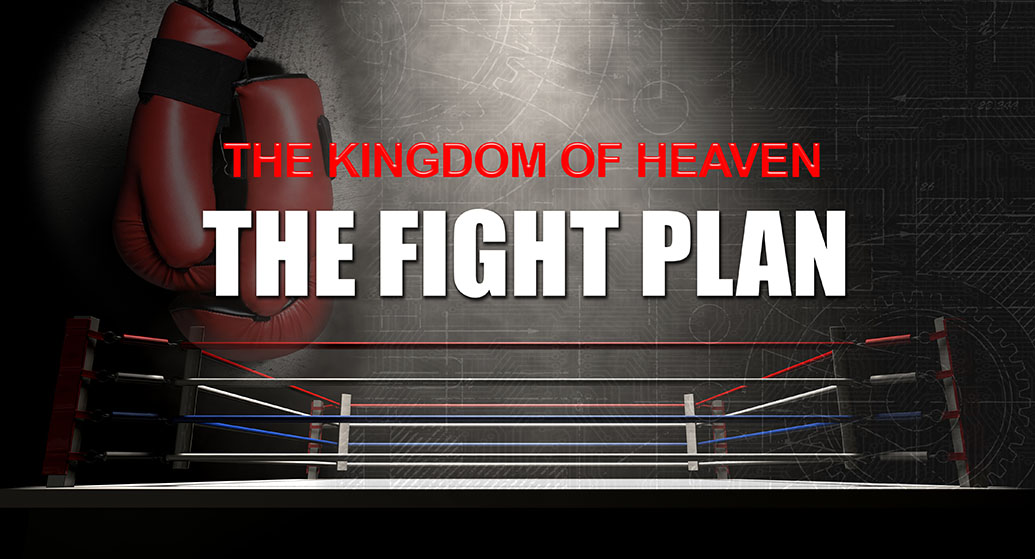 The Fight Plan